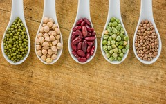 protéines_végétales_ou_animales
