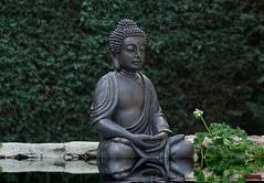 manger zen